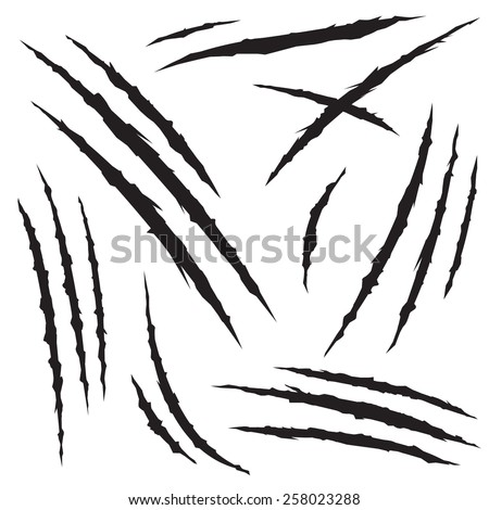 set of claw scratches  isolated