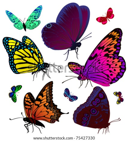 stock vector Set of color butterflies of tattoos