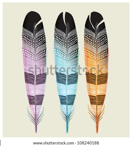 SET OF COLORED FEATHERS.  Vector illustration editable file.