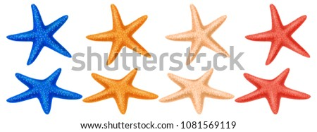 set of colored starfish on a