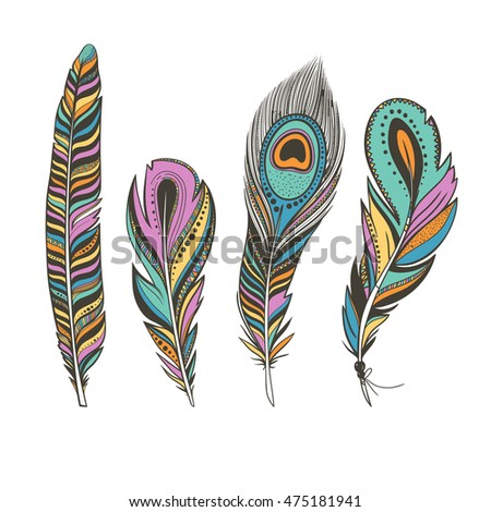 set of colorful bird feathers isolated on white, bright peacock feathers, vector illustration