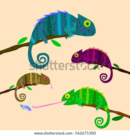 set of colorful chameleons