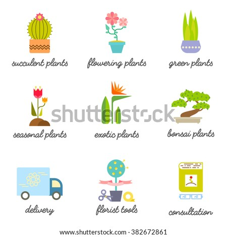 Set of colorful flat icons for Flower or Florist shop. Different types of House plants illustration. Vector botanical graphic set for logo design.