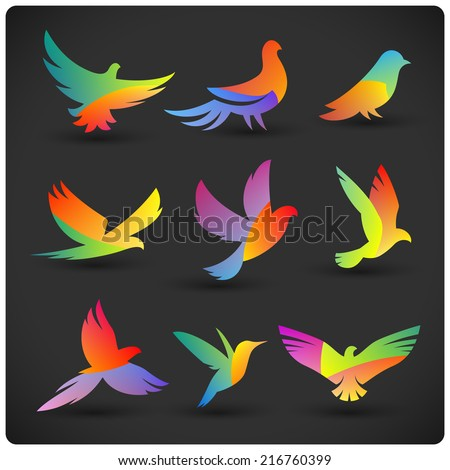 set of colorful flying birds