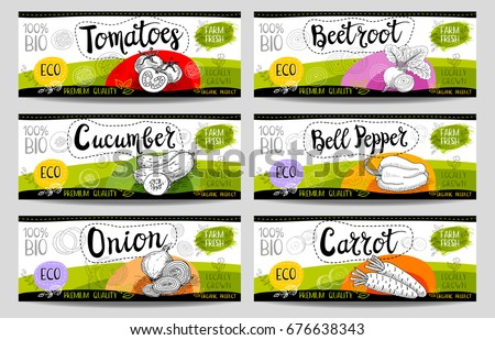 Set of colorful stickers in sketch style, food and spices, white, horizontal. Carrot, onions, tomato, bell pepper, beet. Bio vegetables, farm, fresh. locally grown. Hand drawn vector illustration.