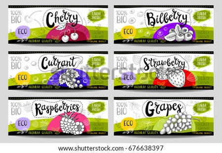 Set of colorful stickers in sketch style, food, spices, white, horizontal. Cherry, bilberry, strawberry, currant, grapes, raspberries. Organic, fresh, bio, eco. Hand drawn vector illustration.