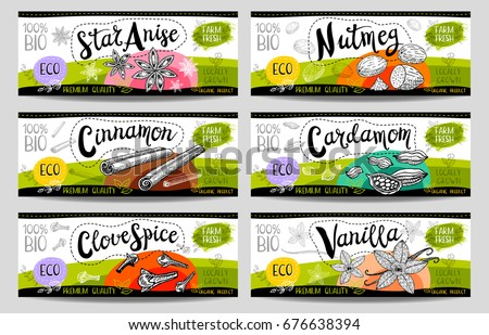 Set of colorful stickers, sketch style, food, spices, white, horizontal. Cinnamon, vanilla, cardamom, star anise, nutmeg, clove. Spices, vegan food, organic product. Hand drawn vector illustration.