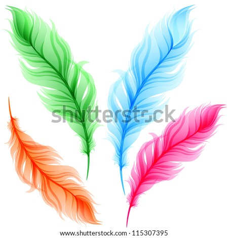 Set of colorful transparent feathers
