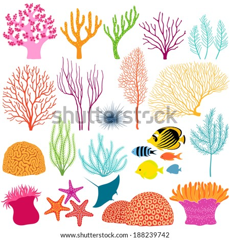 set of colorful underwater