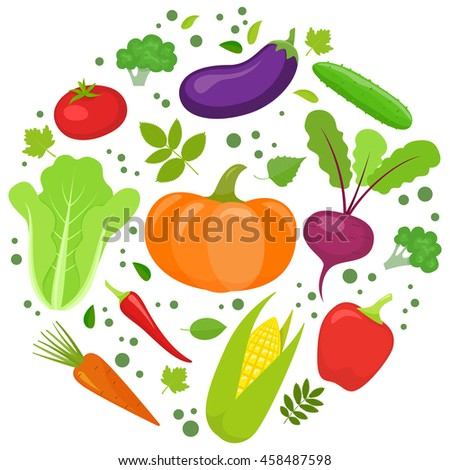 Set of colorful vegetables in circle shape background. Template for packaging, cards, posters and eco food menu. Vector stock illustration. #458487598