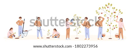 Set of couple planting and caring of tree stages vector flat illustration. Man and woman seedling, cultivation and collecting harvest isolated on white. Concept of collaboration and environment care
