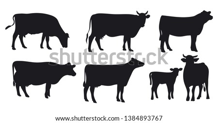 Set of cows. Black silhouette cow isolated on white. Hand drawn vector illustration.