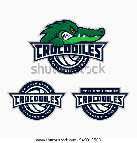 Set of crocodile mascot for a volleyball team. Vector illustration.