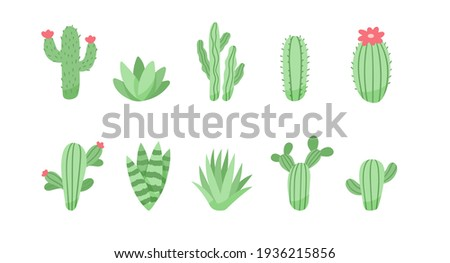 Set of cute cactus and succulents, vector illustration in flat style