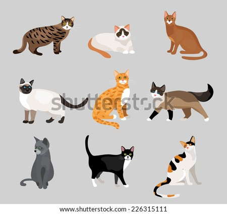 set of cute cartoon kitties or