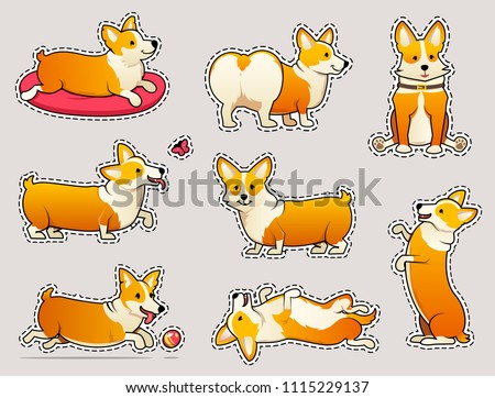 Set of cute dogs breed Welsh Corgi Pembroke on white background. stickers for girls. A domestic pet, a happy royal animal for girls. Funny Red haired puppy looks like a fox. Vector illustration.