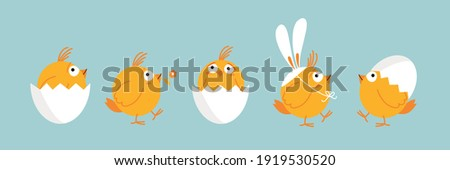 Set of cute easter chicks. Funny yellow chicken in cracked eggs and eggs shell, wearing easter bunny ears. Happy birds, cartoon characters, vector illustration, flat design