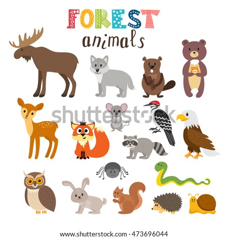 set of cute forest animals in