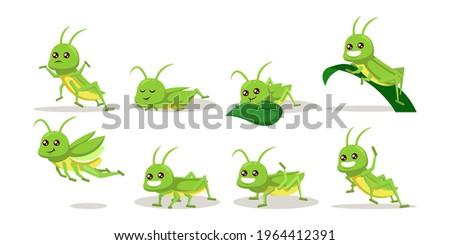 set of cute green grasshopper