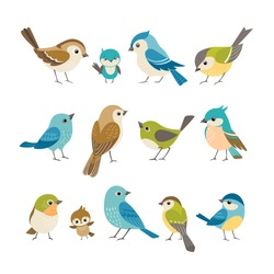 Set of cute little colorful birds isolated on white background