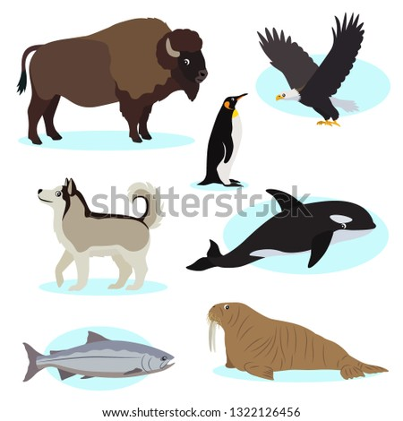 set of cute wild animals icon