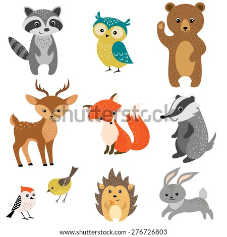set of cute woodland animals