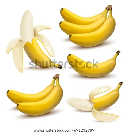 16ada325d4b68 Set of 3d vector realistic illustration bananas. Banana