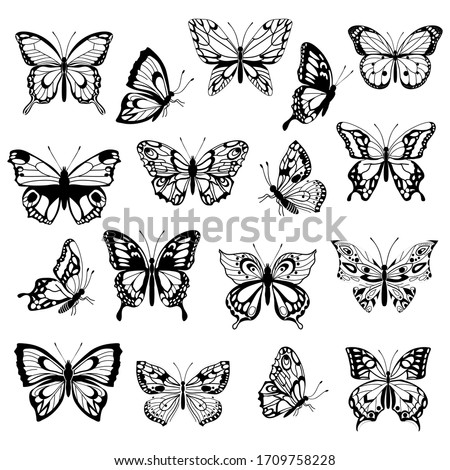 Set of decorative butterflies. Set of butterflies silhouettes isolated on white background. Decorative design elements. Vector illustration.