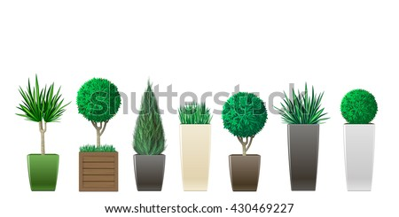 set of decorative plants in