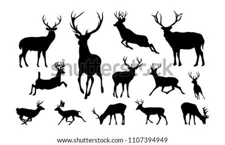 Set of Deer Illustration silhouette vector