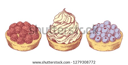 Set of delicious hand drawn creamy biscuit and tarts with berries. Engraving style pen pencil painting vintage vector lineart colored illustration on white background. Collection of sweet desserts.
