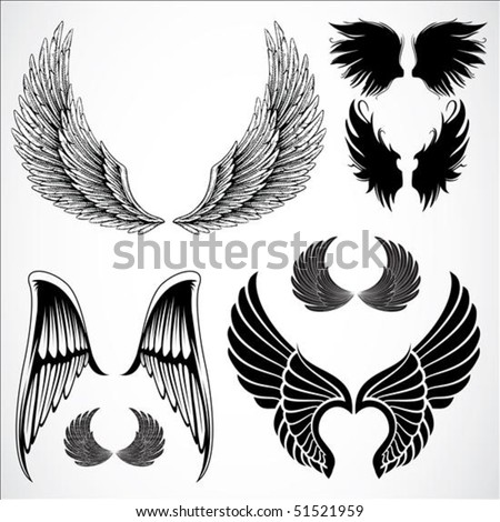Set of detailed vector wings Easy to edit