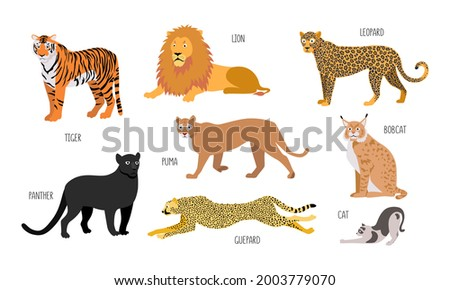 set of different animals of the