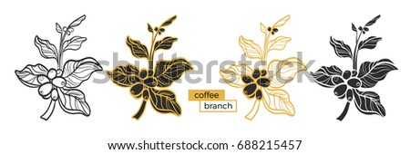set of different branches of