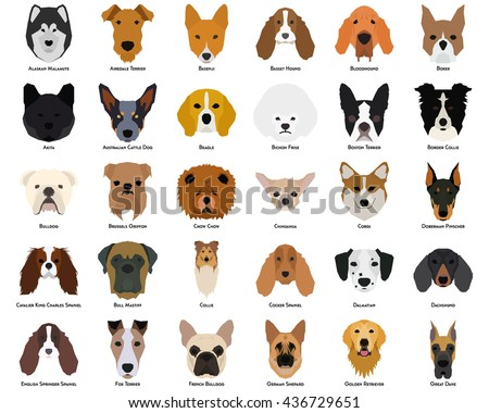 set of different breeds of dogs