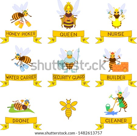 Set of different cartoon bee social castes with titles isolated on white background