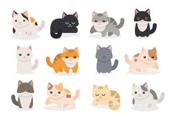 Set of different cartoon cats.Vector illustration isolated on white background.