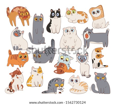 set of different cat breeds