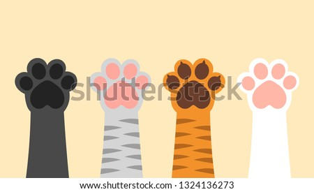 Set of different colors cats paws up. Vector illustration.