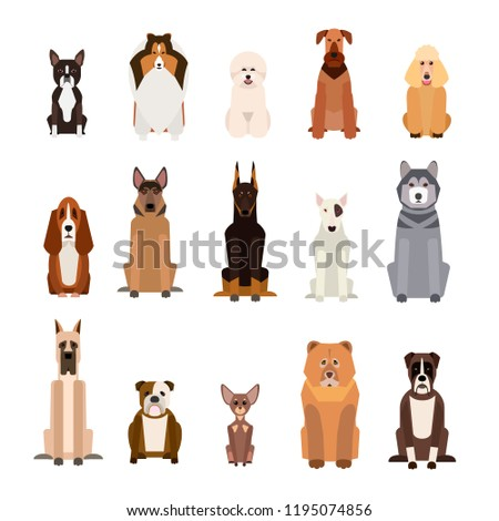 stock-vector-set-of-different-dogs