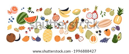 Set of different fruits and berries. Collection of organic vitamins and healthy nutrition. Watermelon, pineapple, bananas and avocado. Colored flat vector illustration isolated on white background