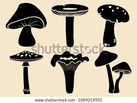 Set of different mushrooms. Black silhouette. Vector illustration