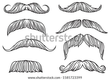 Set of different mustache. Mustache collection for hairdresser or for carnival mask. Linear art. Black and white illustration for barbershop.
