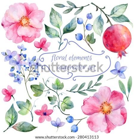 Set of different red, pink flowers and pomegranate  for design. Watercolor roses, leaves. pomegranate . Set of floral elements for your compositions.