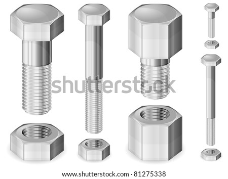 Set of different size metal bolts and nuts isolated on white, vector illustration