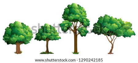 Set of different tree design illustration