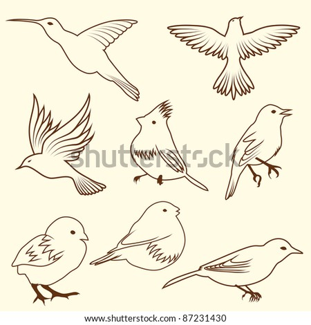 Set of differnet sketch bird. Vector illustration for design use. - stock vector