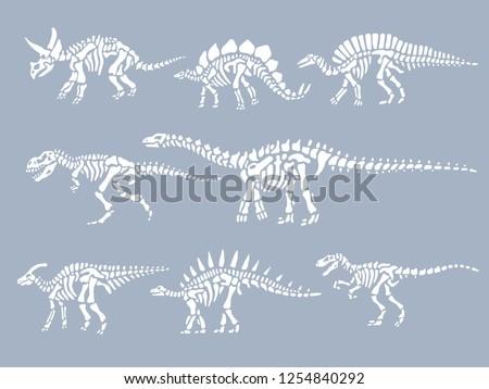 set of dinosaurs fossils