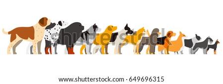set of dog breeds  side view...