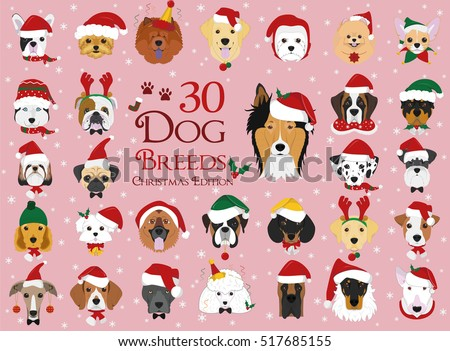 set of 30 dog breeds with